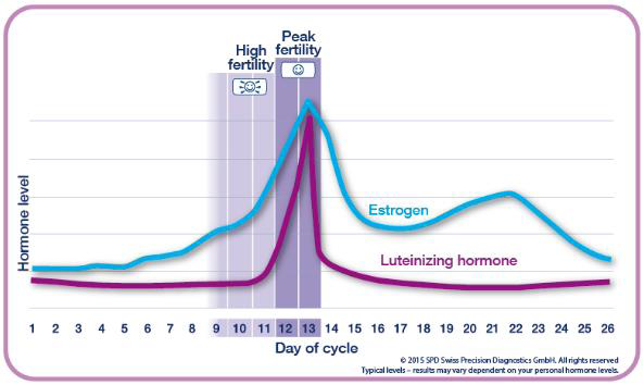 Advanced Digital Ovulation Test: Typically identifies 4 or