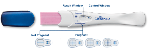 Rapid Detection Pregnancy Test Fast Results Clearblue